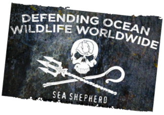 Logo Sea Shepherd
